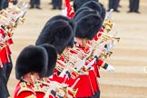 Trooping the Colour 2014. Horse Guards Parade, Westminster, London SW1A,  United Kingdom, on 14 June 2014 at 11:15, image #484