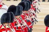 Trooping the Colour 2014. Horse Guards Parade, Westminster, London SW1A,  United Kingdom, on 14 June 2014 at 11:15, image #485