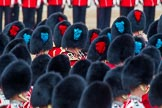 Trooping the Colour 2014. Horse Guards Parade, Westminster, London SW1A,  United Kingdom, on 14 June 2014 at 11:16, image #492