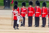 Trooping the Colour 2014. Horse Guards Parade, Westminster, London SW1A,  United Kingdom, on 14 June 2014 at 11:16, image #497