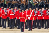 Trooping the Colour 2014. Horse Guards Parade, Westminster, London SW1A,  United Kingdom, on 14 June 2014 at 11:17, image #500