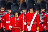 Trooping the Colour 2014. Horse Guards Parade, Westminster, London SW1A,  United Kingdom, on 14 June 2014 at 11:17, image #501