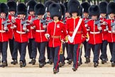 Trooping the Colour 2014. Horse Guards Parade, Westminster, London SW1A,  United Kingdom, on 14 June 2014 at 11:18, image #503