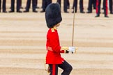 Trooping the Colour 2014. Horse Guards Parade, Westminster, London SW1A,  United Kingdom, on 14 June 2014 at 11:18, image #507