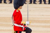 Trooping the Colour 2014. Horse Guards Parade, Westminster, London SW1A,  United Kingdom, on 14 June 2014 at 11:18, image #508