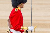 Trooping the Colour 2014. Horse Guards Parade, Westminster, London SW1A,  United Kingdom, on 14 June 2014 at 11:18, image #509