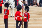 Trooping the Colour 2014. Horse Guards Parade, Westminster, London SW1A,  United Kingdom, on 14 June 2014 at 11:21, image #526