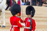 Trooping the Colour 2014. Horse Guards Parade, Westminster, London SW1A,  United Kingdom, on 14 June 2014 at 11:21, image #528