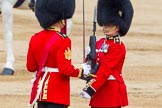 Trooping the Colour 2014. Horse Guards Parade, Westminster, London SW1A,  United Kingdom, on 14 June 2014 at 11:21, image #529