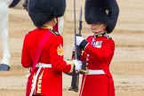 Trooping the Colour 2014. Horse Guards Parade, Westminster, London SW1A,  United Kingdom, on 14 June 2014 at 11:21, image #530