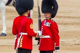 Trooping the Colour 2014. Horse Guards Parade, Westminster, London SW1A,  United Kingdom, on 14 June 2014 at 11:21, image #531