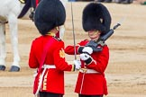 Trooping the Colour 2014. Horse Guards Parade, Westminster, London SW1A,  United Kingdom, on 14 June 2014 at 11:21, image #532