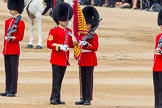 Trooping the Colour 2014. Horse Guards Parade, Westminster, London SW1A,  United Kingdom, on 14 June 2014 at 11:21, image #533