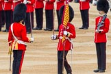 Trooping the Colour 2014. Horse Guards Parade, Westminster, London SW1A,  United Kingdom, on 14 June 2014 at 11:21, image #535