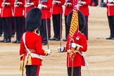 Trooping the Colour 2014. Horse Guards Parade, Westminster, London SW1A,  United Kingdom, on 14 June 2014 at 11:21, image #536