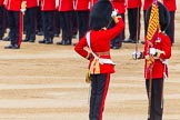 Trooping the Colour 2014. Horse Guards Parade, Westminster, London SW1A,  United Kingdom, on 14 June 2014 at 11:21, image #537