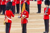 Trooping the Colour 2014. Horse Guards Parade, Westminster, London SW1A,  United Kingdom, on 14 June 2014 at 11:21, image #538