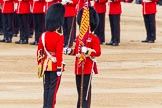 Trooping the Colour 2014. Horse Guards Parade, Westminster, London SW1A,  United Kingdom, on 14 June 2014 at 11:21, image #539