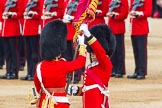Trooping the Colour 2014. Horse Guards Parade, Westminster, London SW1A,  United Kingdom, on 14 June 2014 at 11:21, image #540