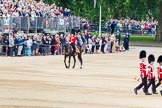 Trooping the Colour 2014. Horse Guards Parade, Westminster, London SW1A,  United Kingdom, on 14 June 2014 at 11:33, image #591