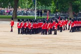 Trooping the Colour 2014. Horse Guards Parade, Westminster, London SW1A,  United Kingdom, on 14 June 2014 at 11:33, image #594