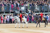Trooping the Colour 2014. Horse Guards Parade, Westminster, London SW1A,  United Kingdom, on 14 June 2014 at 11:35, image #603
