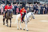Trooping the Colour 2014. Horse Guards Parade, Westminster, London SW1A,  United Kingdom, on 14 June 2014 at 11:35, image #610