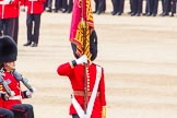 Trooping the Colour 2014. Horse Guards Parade, Westminster, London SW1A,  United Kingdom, on 14 June 2014 at 11:36, image #615