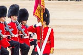 Trooping the Colour 2014. Horse Guards Parade, Westminster, London SW1A,  United Kingdom, on 14 June 2014 at 11:36, image #616