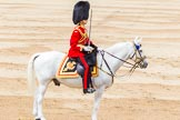 Trooping the Colour 2014. Horse Guards Parade, Westminster, London SW1A,  United Kingdom, on 14 June 2014 at 11:36, image #621