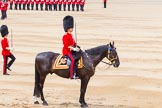 Trooping the Colour 2014. Horse Guards Parade, Westminster, London SW1A,  United Kingdom, on 14 June 2014 at 11:36, image #622