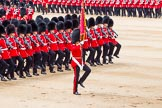 Trooping the Colour 2014. Horse Guards Parade, Westminster, London SW1A,  United Kingdom, on 14 June 2014 at 11:36, image #623