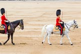 Trooping the Colour 2014. Horse Guards Parade, Westminster, London SW1A,  United Kingdom, on 14 June 2014 at 11:37, image #625