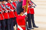 Trooping the Colour 2014. Horse Guards Parade, Westminster, London SW1A,  United Kingdom, on 14 June 2014 at 11:37, image #626