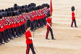 Trooping the Colour 2014. Horse Guards Parade, Westminster, London SW1A,  United Kingdom, on 14 June 2014 at 11:37, image #627