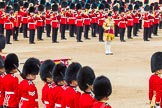 Trooping the Colour 2014. Horse Guards Parade, Westminster, London SW1A,  United Kingdom, on 14 June 2014 at 11:37, image #631