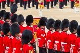 Trooping the Colour 2014. Horse Guards Parade, Westminster, London SW1A,  United Kingdom, on 14 June 2014 at 11:37, image #632