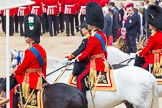 Trooping the Colour 2014. Horse Guards Parade, Westminster, London SW1A,  United Kingdom, on 14 June 2014 at 11:39, image #648