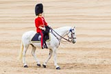 Trooping the Colour 2014. Horse Guards Parade, Westminster, London SW1A,  United Kingdom, on 14 June 2014 at 11:39, image #653