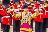 Trooping the Colour 2014. Horse Guards Parade, Westminster, London SW1A,  United Kingdom, on 14 June 2014 at 11:40, image #657