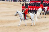 Trooping the Colour 2014. Horse Guards Parade, Westminster, London SW1A,  United Kingdom, on 14 June 2014 at 11:40, image #660