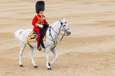 Trooping the Colour 2014. Horse Guards Parade, Westminster, London SW1A,  United Kingdom, on 14 June 2014 at 11:40, image #661