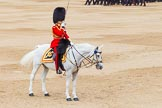 Trooping the Colour 2014. Horse Guards Parade, Westminster, London SW1A,  United Kingdom, on 14 June 2014 at 11:40, image #662