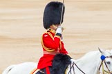 Trooping the Colour 2014. Horse Guards Parade, Westminster, London SW1A,  United Kingdom, on 14 June 2014 at 11:41, image #663