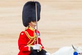 Trooping the Colour 2014. Horse Guards Parade, Westminster, London SW1A,  United Kingdom, on 14 June 2014 at 11:41, image #664