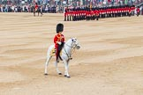 Trooping the Colour 2014. Horse Guards Parade, Westminster, London SW1A,  United Kingdom, on 14 June 2014 at 11:41, image #665