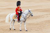 Trooping the Colour 2014. Horse Guards Parade, Westminster, London SW1A,  United Kingdom, on 14 June 2014 at 11:48, image #696