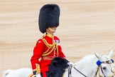 Trooping the Colour 2014. Horse Guards Parade, Westminster, London SW1A,  United Kingdom, on 14 June 2014 at 11:48, image #697