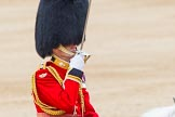 Trooping the Colour 2014. Horse Guards Parade, Westminster, London SW1A,  United Kingdom, on 14 June 2014 at 11:48, image #698