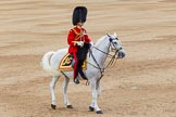 Trooping the Colour 2014. Horse Guards Parade, Westminster, London SW1A,  United Kingdom, on 14 June 2014 at 11:48, image #699